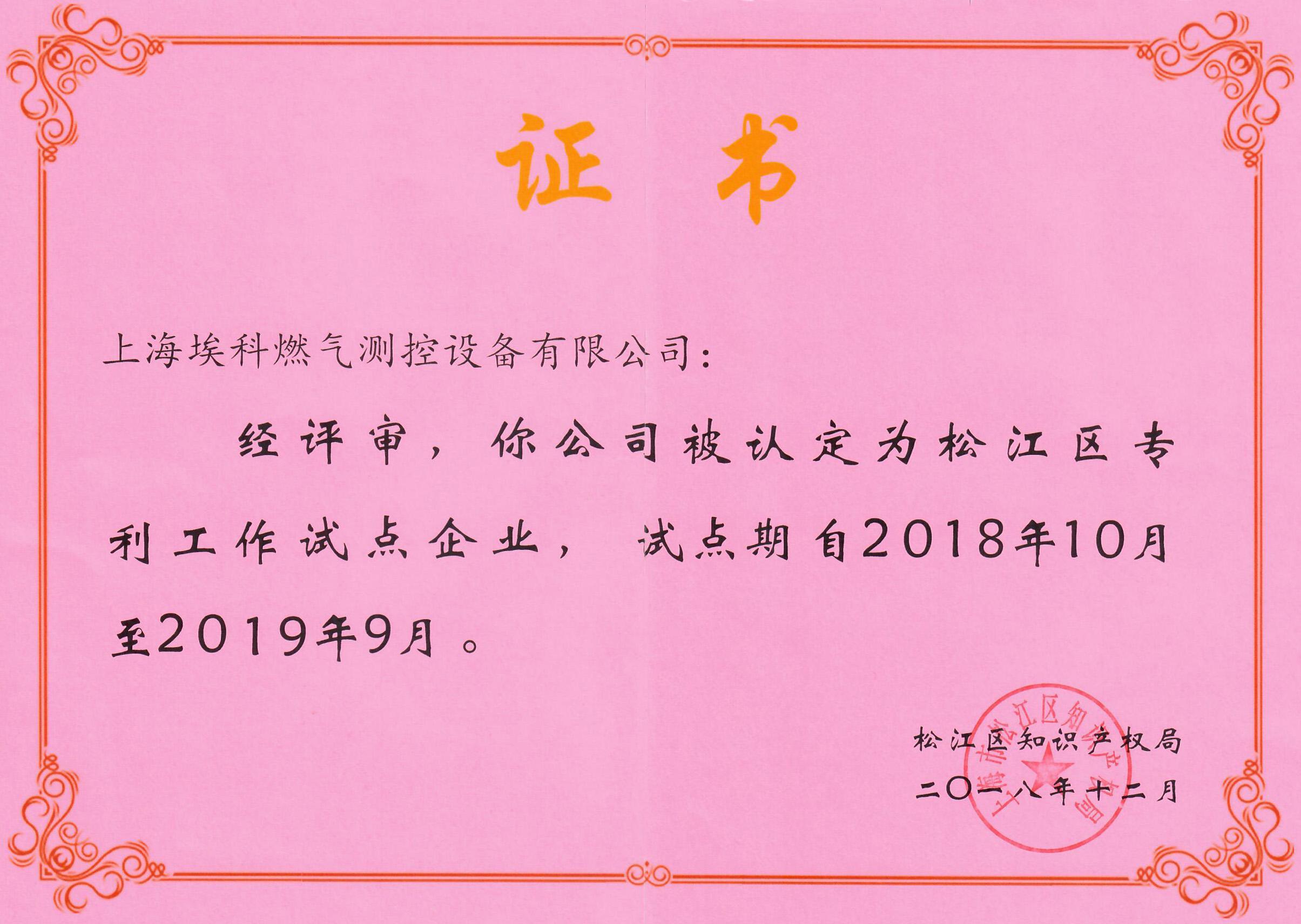 上海市松江區專利試點企業